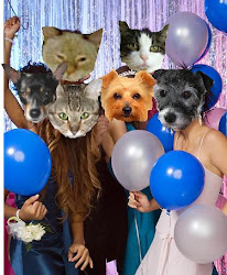 First Anipal Prom