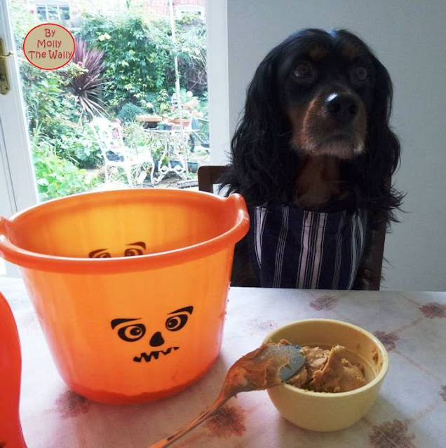 Molly The Wallys' Barking Bakes for Halloween 4