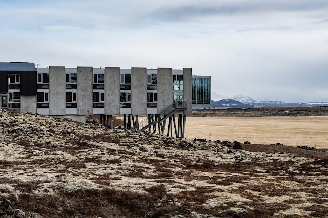 The Ion Hotel & Icelandic Ponies
