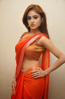 Actress Sony Charishta  Pictures in Saree at Naakaithe Nachindi Audio Launch Function 0079.jpg