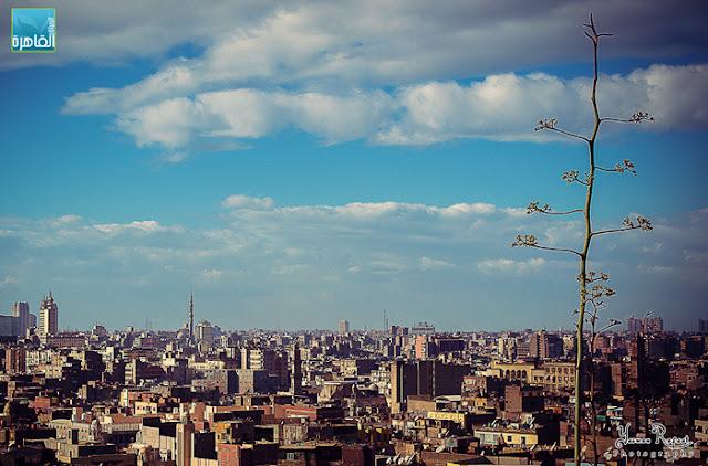 الحياة في القاهرة - ثابت