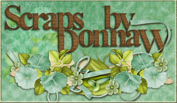 Scraps by Donna W