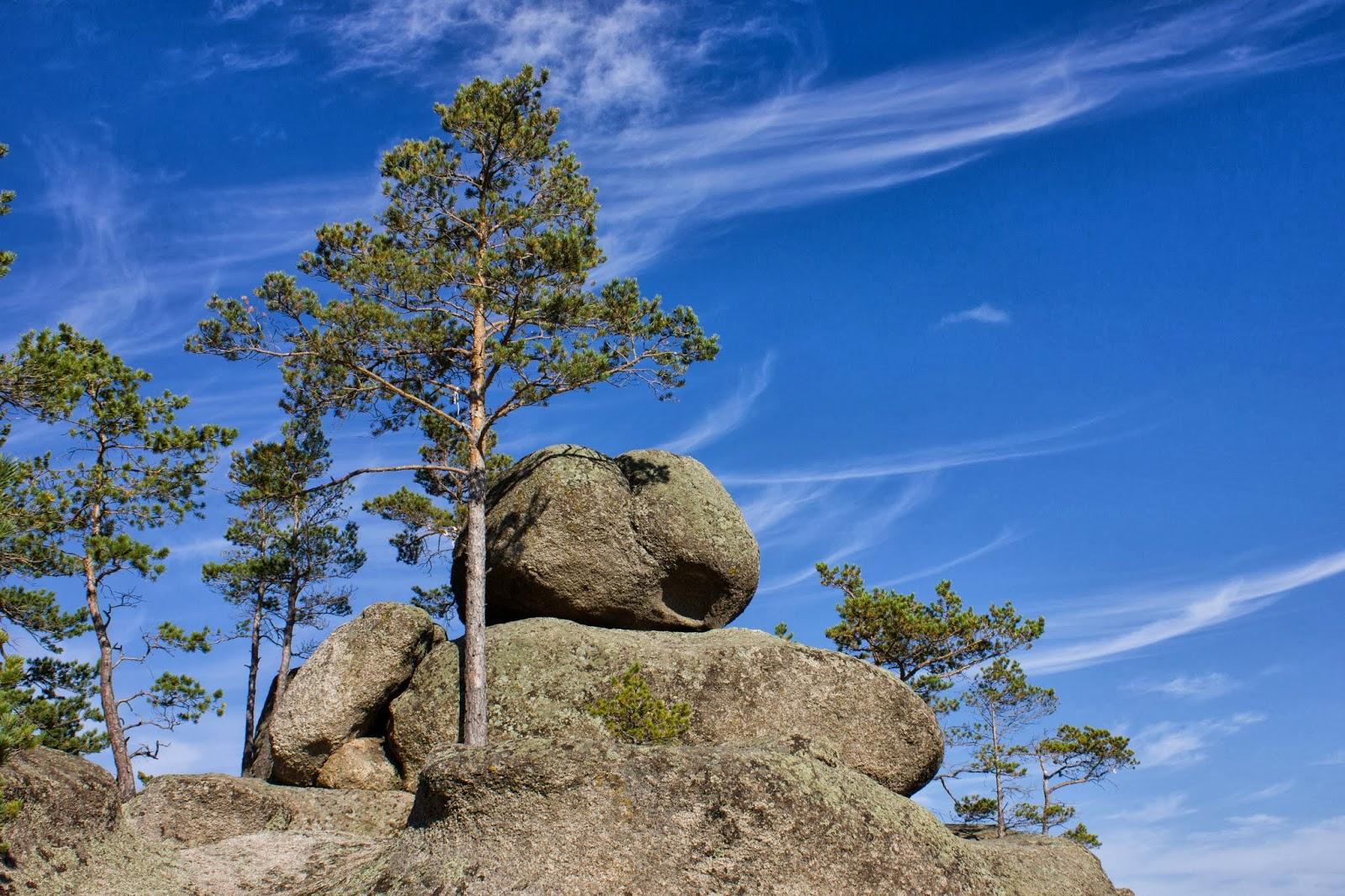 Казахстан, Боровое, Бурабай, Дерево из камня