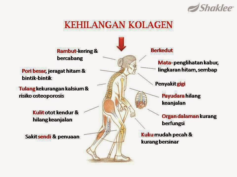 Kesan-kesan kehilangan kolagen