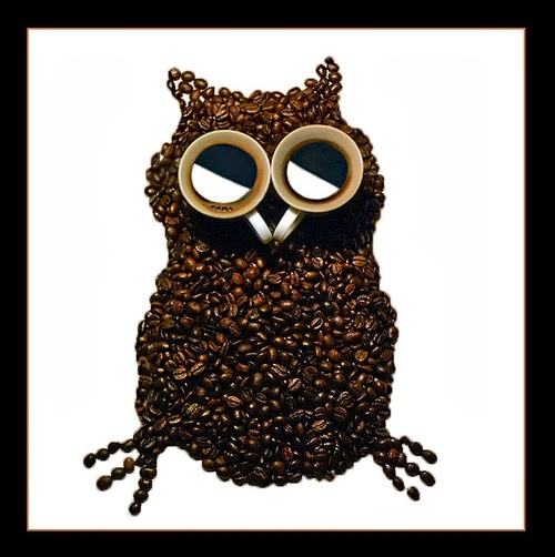 01-Owl-Irina-Nikitina-Music-Teacher-Photography-Coffee-Beans-and-Cups-Of-Coffee-www-designstack-co