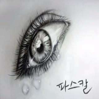 Pascol (파스칼) - 눈물이 앞을 가려 [Digital Single]