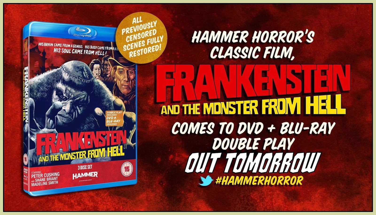 Frankenstein And The Monster From Hell Poster