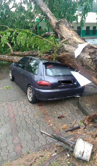kereta satria dihempap pokok