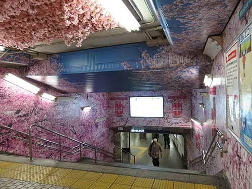 東京メトロ銀座線の上野駅に桜が彩った007