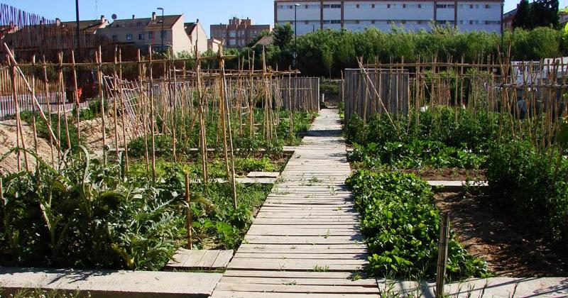 Zaragoza salvaje huertos urbanos for Casetas de huerto