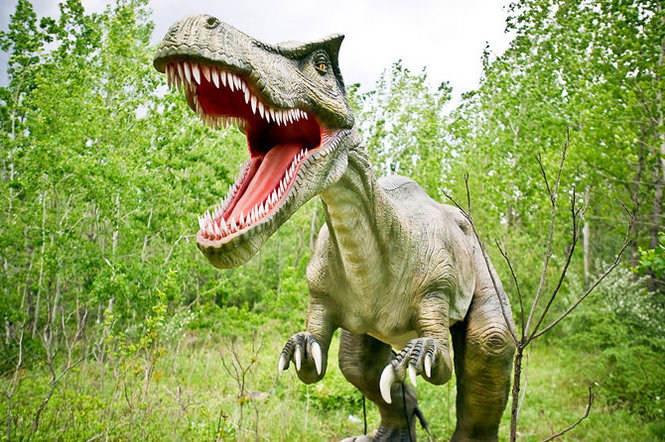 Dinosaur Park takes visitors back to when prehistoric creatures roamed the earth