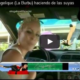 La Fantasia de Angelique (La Burbu) Burgos