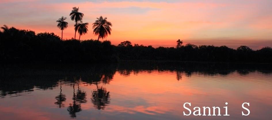 Sanni S