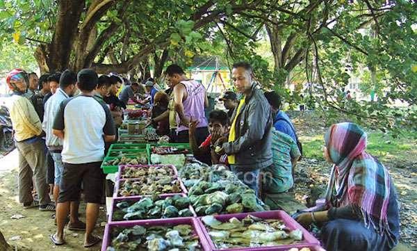 Cerita di Balik Sukses Para Pedagang Batu Bacan di Ternate