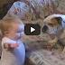 Μωρό μαλώνει μπουλντόγκ και το σκυλί χάνει… τη θέληση για ζωή!