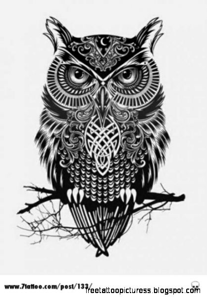 Owl tattoo  well this is awesome i would some how