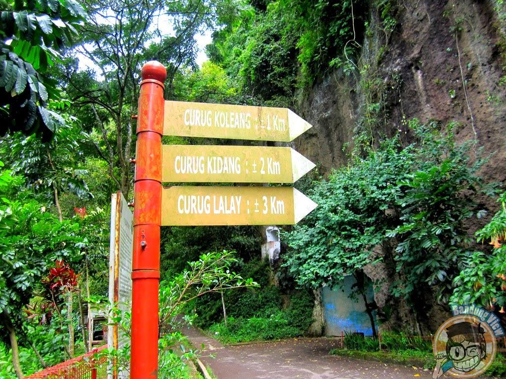 persimpangan Goa Belanda Taman Hutan Raya Djuanda