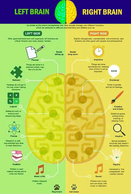 Iq enhance cognitive supplement reviews image 4