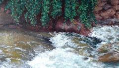 MENSAJES EN VÍDEO (Pintura)
