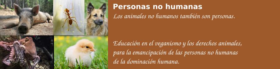 Personas no humanas
