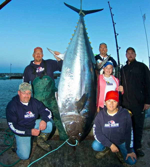 International fishing news canada caught record size for Tuna fish size