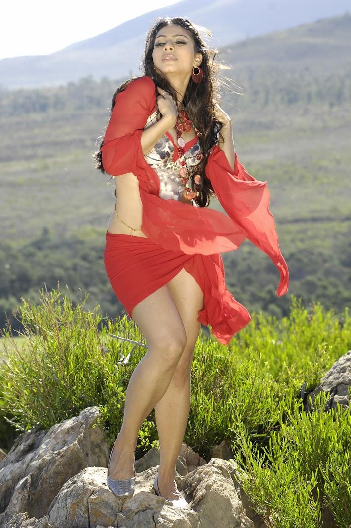BackTack - Tanisha Mukherjee Hot Stills from South