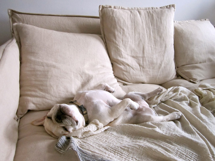 List of synonyms and antonyms of the word lazy sunday