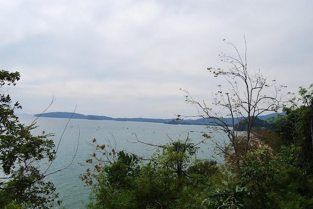 Вид с обезьяньей тропы. View from monkey road