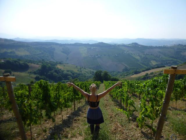 working on vineyard