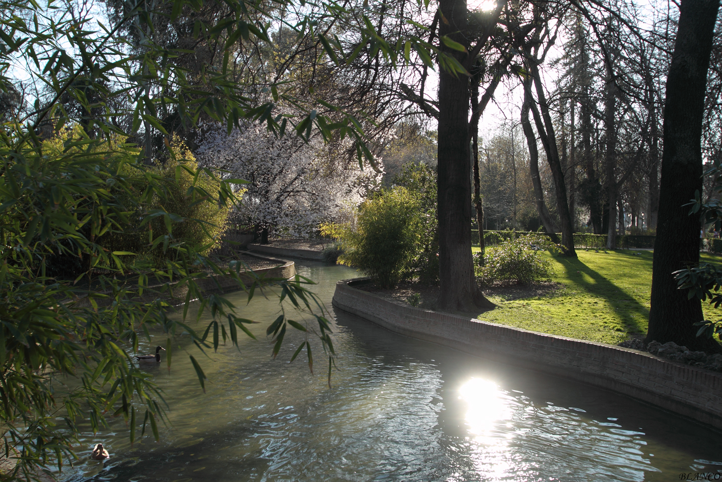 Madrid en foto parque del retiro r as del estanque grande Estanque grande