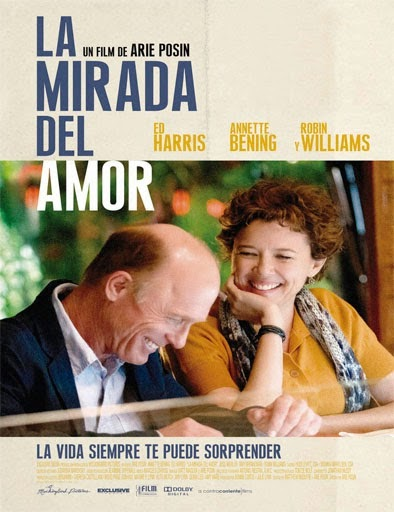 Ver La mirada del amor (The Face of Love) (2013) Online