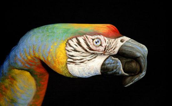 Art me duar. Hand+art+%2813%29