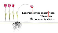 Les Printemps Meurtriers 2 d. 17 au 19 mai, 2013
