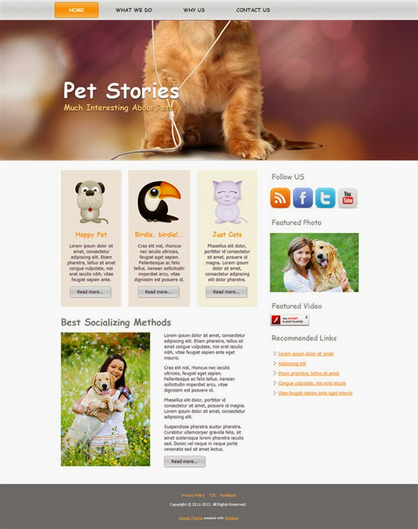 Pet Stories - Free Drupal Theme
