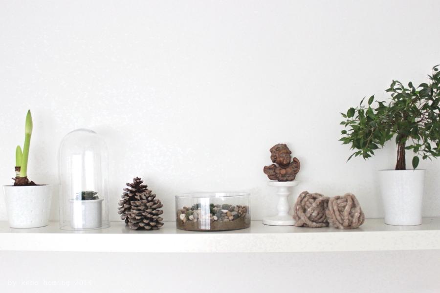 Blumen, Dekoration, Sukkulenten, succulents, plants, shelfie, inspiration