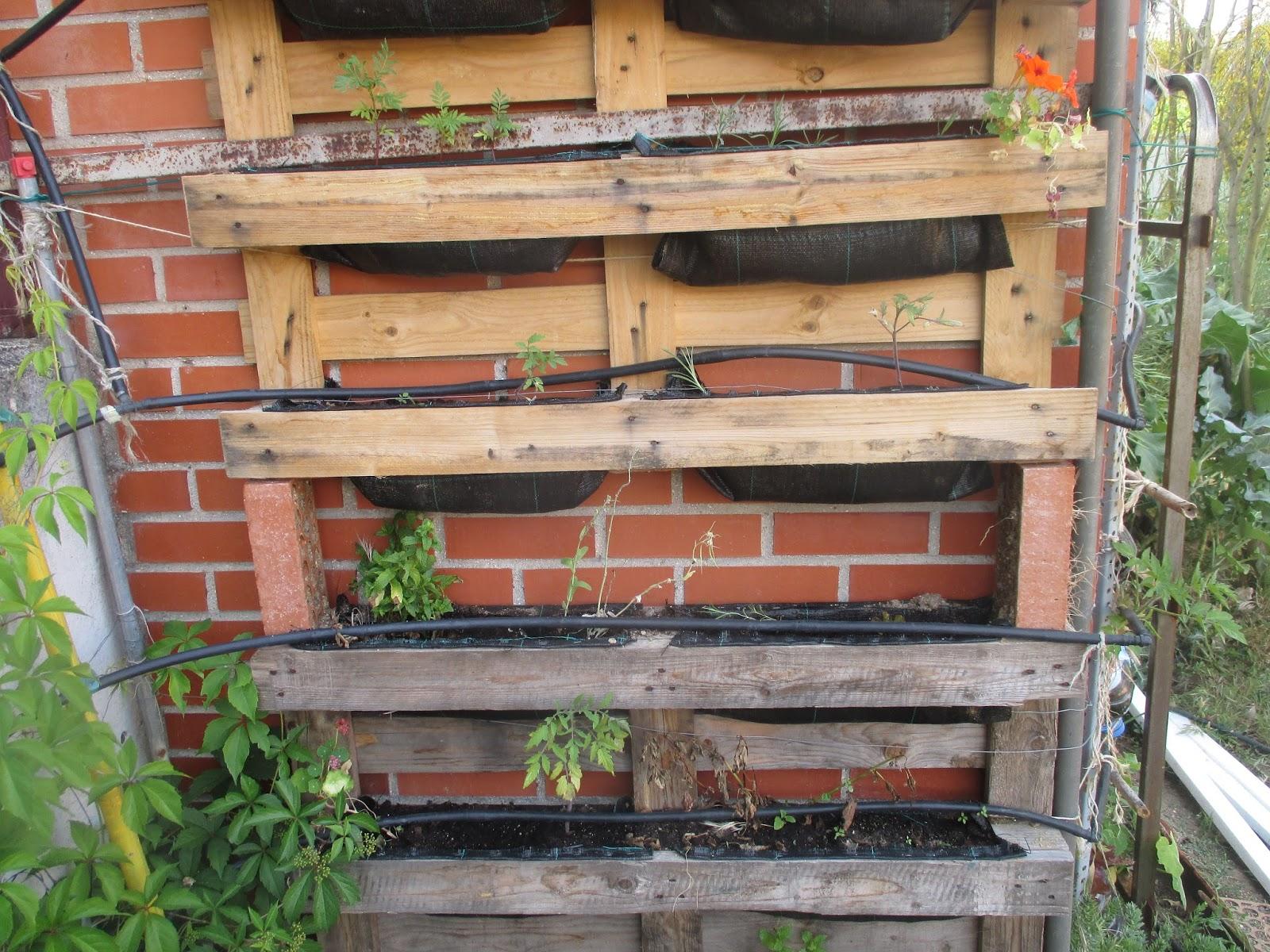 En torno al huerto el huerto vertical del colegio maria - Huerto vertical casero ...