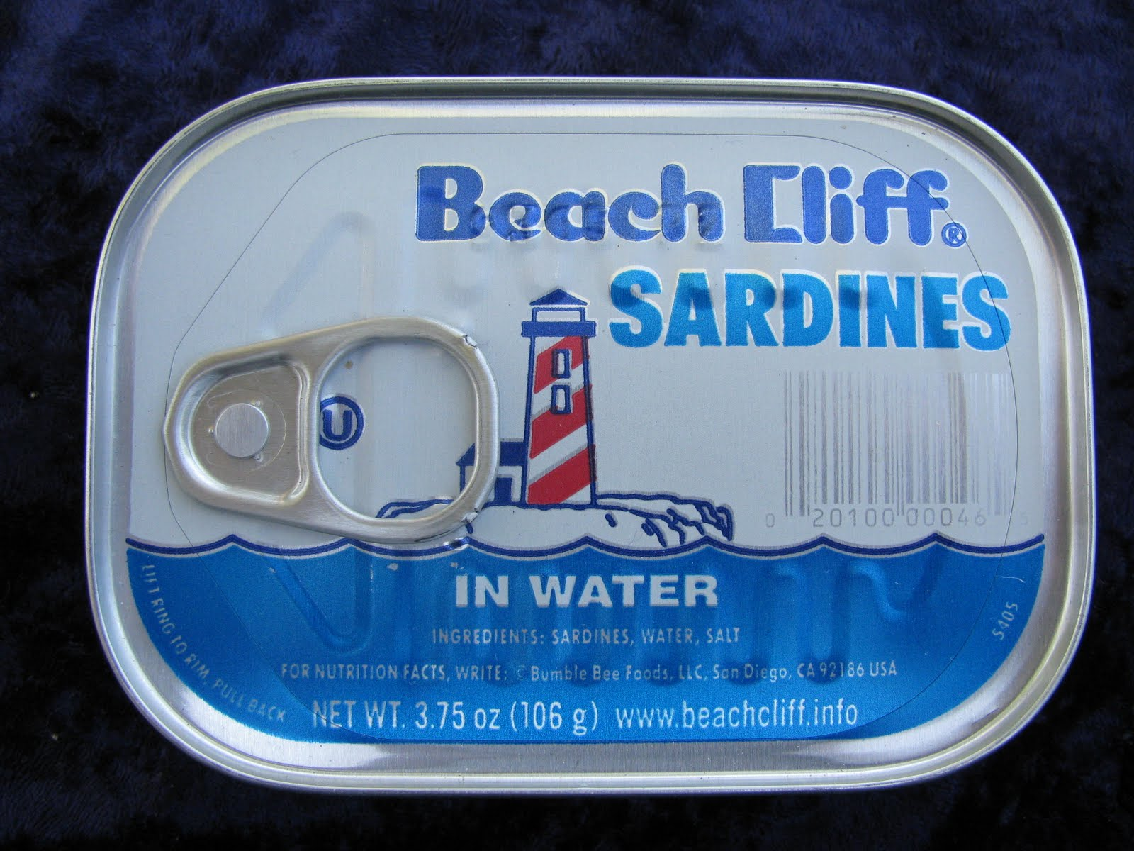 Sardines in water calories