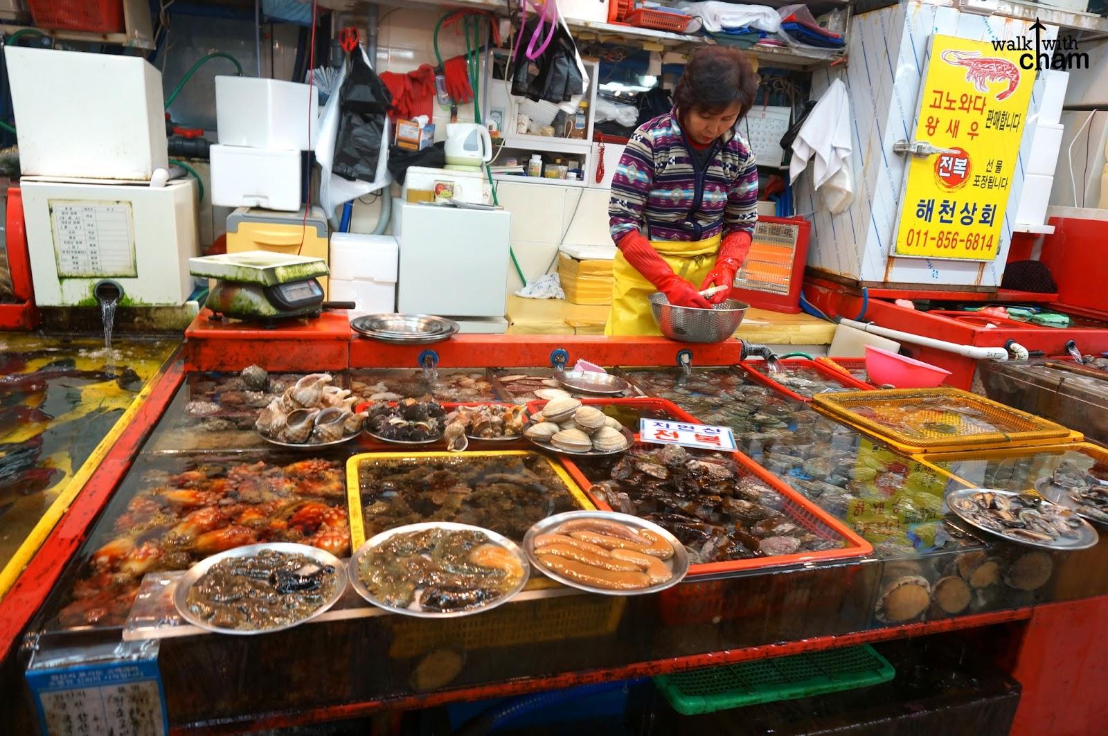 Walk with Cham: Jagalchi Fish Market Busan South Korea