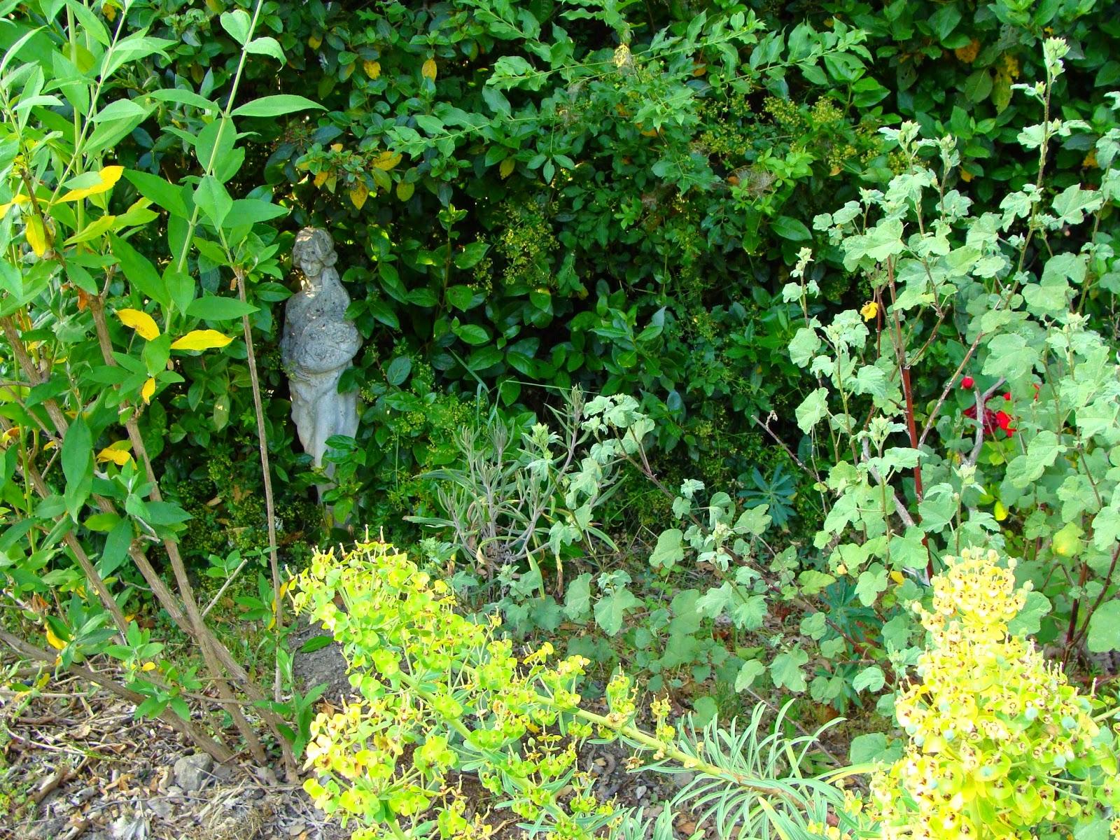 Jardine et ris c est la cata for Jardin jardine