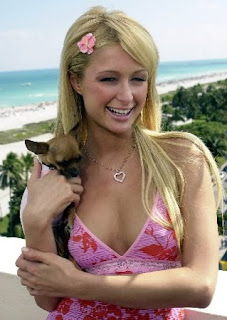 Beautiful Paris Hilton with cute Chihuahua in her hands at the beach