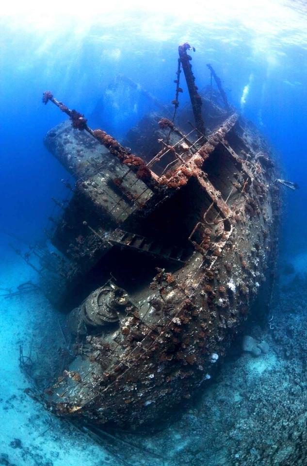 Shipwreck in the northern red sea egypt
