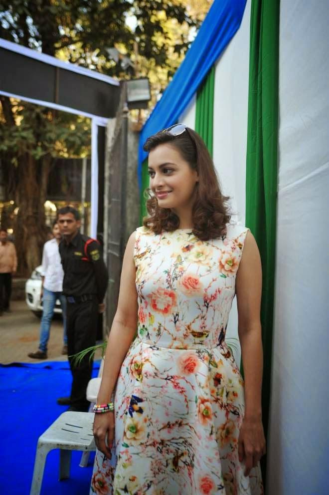 Dia Mirza Cocktail Dresses Photos