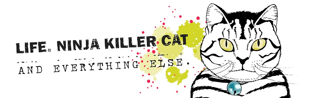Life, Ninja Killer Cat and Everything Else ...