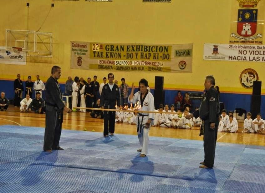 Gimnasio han kuk hapkido taekwondo rompimiento de madera for Gimnasio telde