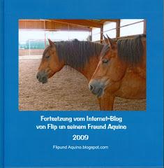 Blogbuch 2009: