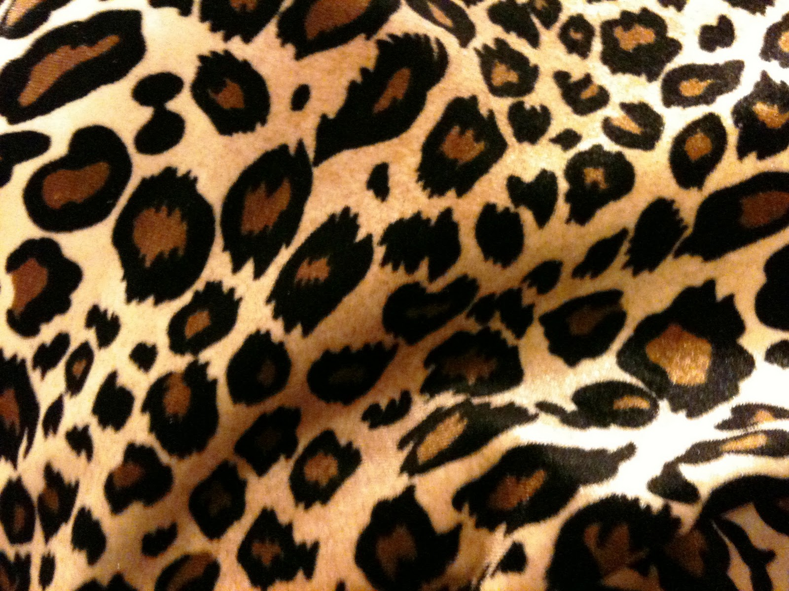 cute cheetah print backgrounds viewing gallery