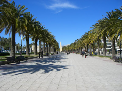Palm trees in Salou promenade