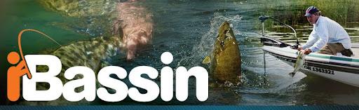 IBASSIN