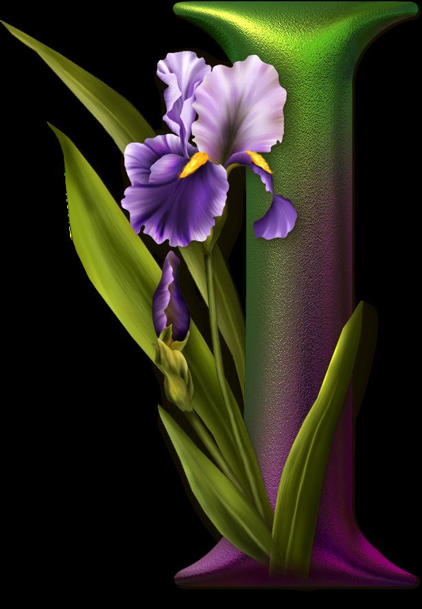 Marcos De Flores Con Letras