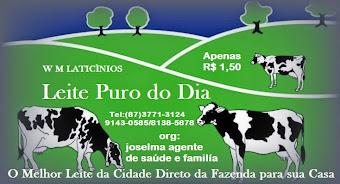 LEITE PURO DO DIA